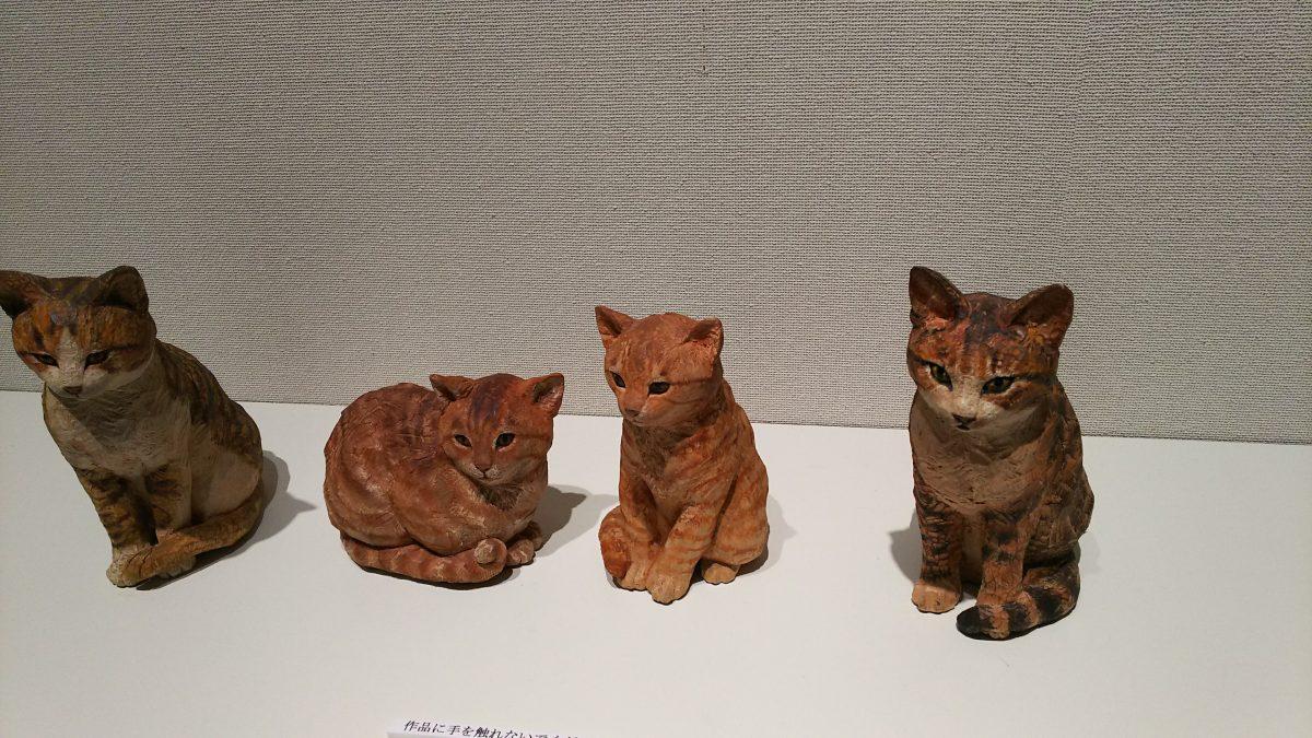 三良坂DE猫のお出迎え♫