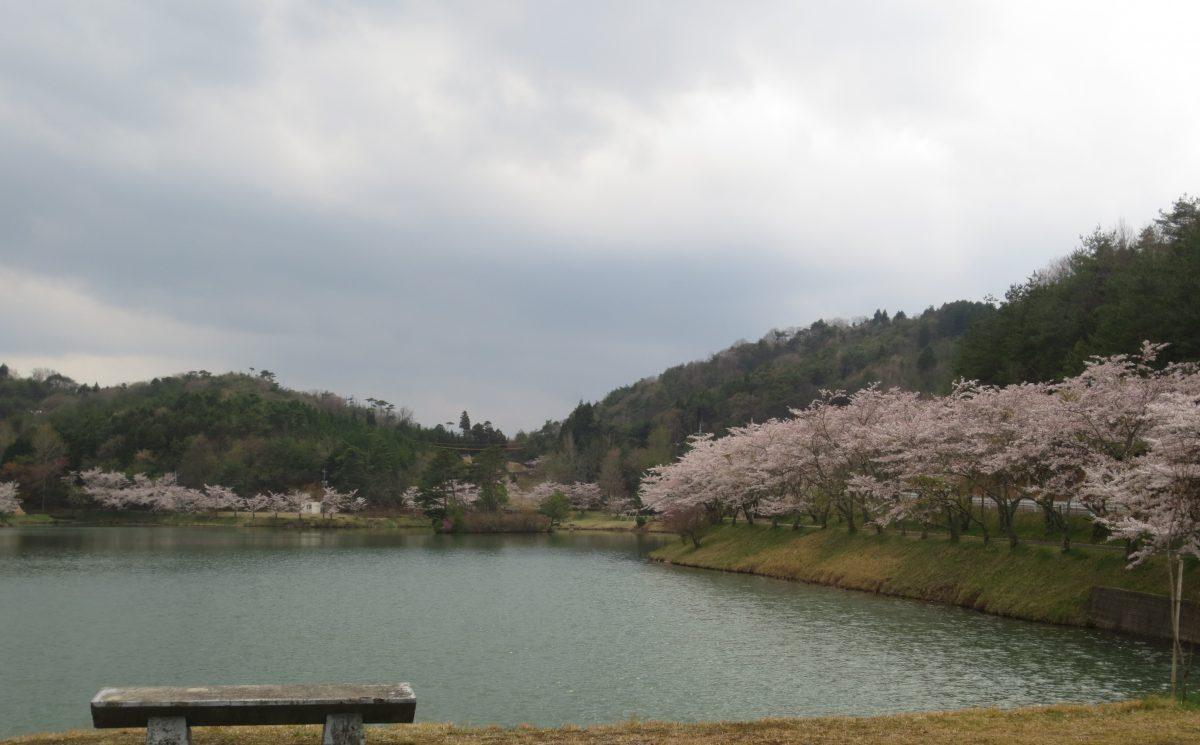 """""""春""""を感じて☘"""